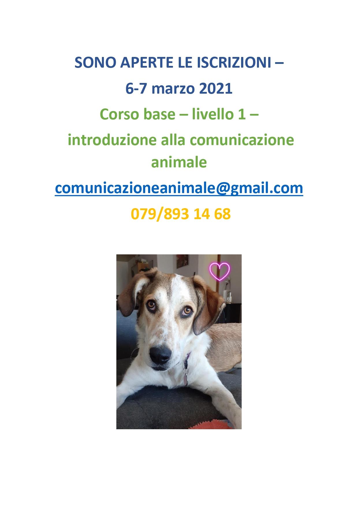 CORSO BASE2021_6-7marzo
